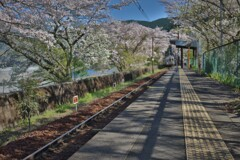 小和田の春