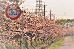 町は、春日和にて候。18