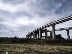 白鳥大橋への大行進