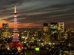 東京夕景 シーサイドトップ タワービュー