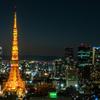 東京夜景 シーサイドトップ タワービュー