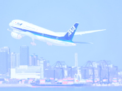 絵画っぽい(全日本空輸 B787-8 JA838A)