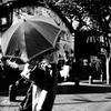 Umbrella! 2018.