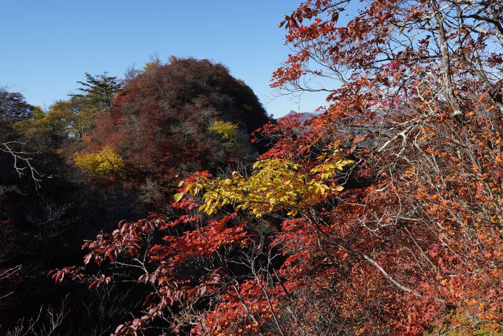 秋の三ツ岩岳
