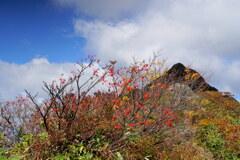 秋深まる第源太山