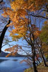 紅葉の榛名湖4