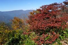 紅葉の三角山