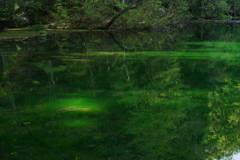 緑深き龍ヶ窪