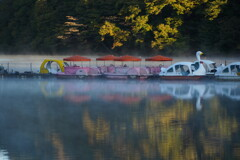 スワンボートの朝