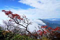 滝雲覆う秋の谷川