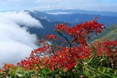 滝雲流れる秋の谷川