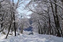 雪景色の通りゃんせ