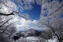 冬の魔法使い