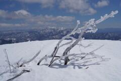 霧氷の先に武尊山