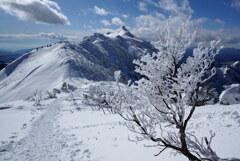 霧氷と剣ヶ峰