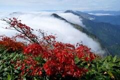 紅く色付く谷川岳