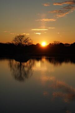 朝陽に染まる波志江沼