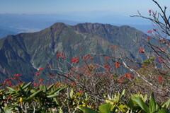 八海山とナナカマド