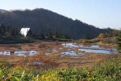 草紅葉囲む高谷池ヒュッテ