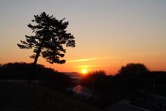 日の出の丘