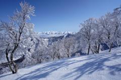 霧氷咲く日白山