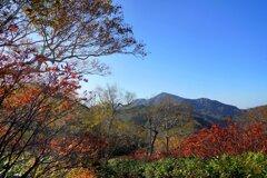 秋色のころ