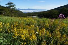 初秋の高原