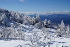 優しい雪に包まれて