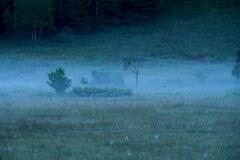霧降りる朝
