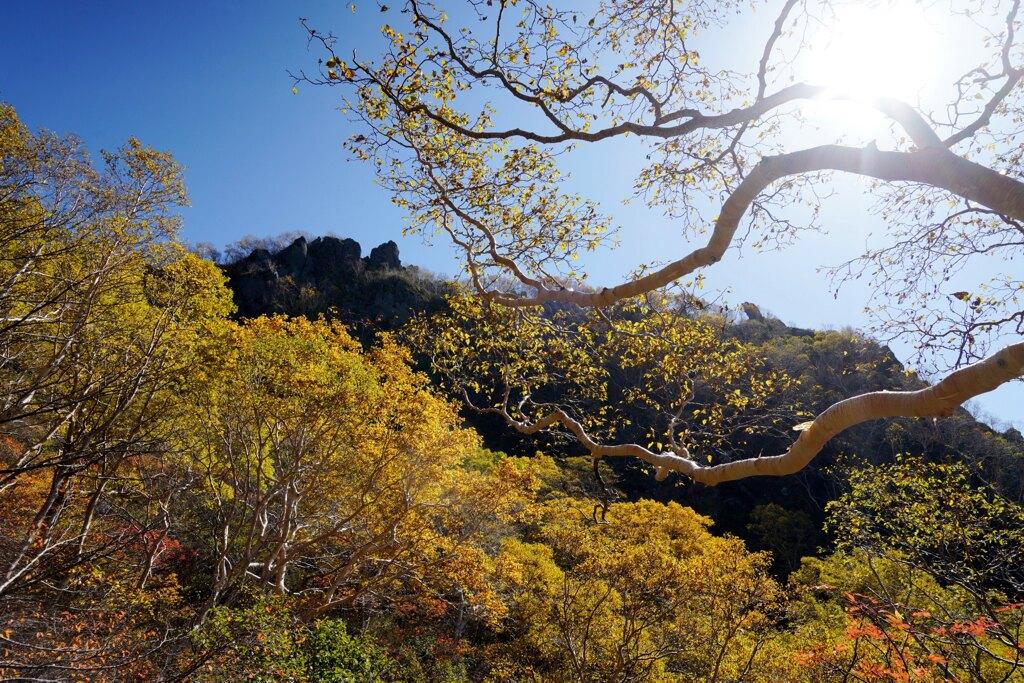 秋色囲まれる頂き