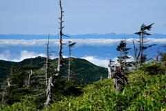 岩菅山から望む