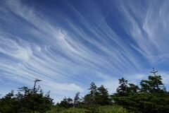 筋雲流れる岩菅山