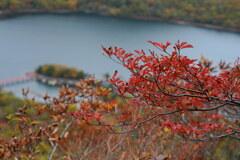 紅葉見降ろす赤城神社