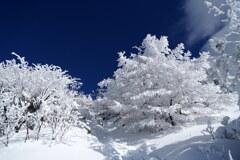 雪のデコレーション