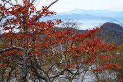 紅葉と鈴ヶ岳