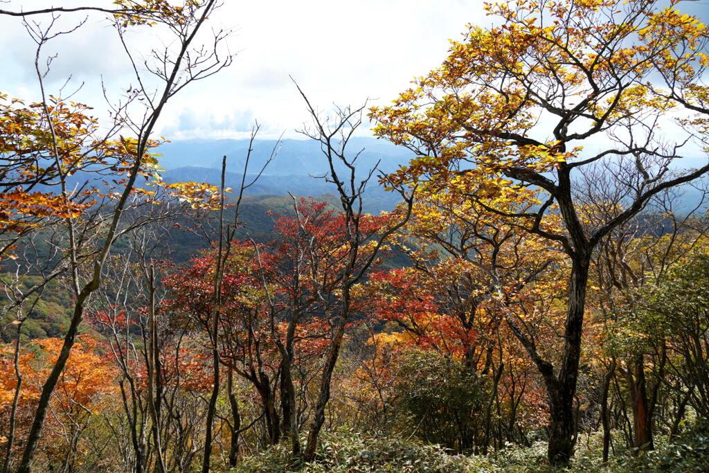 秋色の山旅