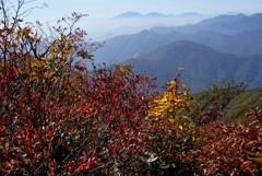 紅葉の山頂から