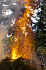 flame01