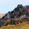 岩壁にも秋