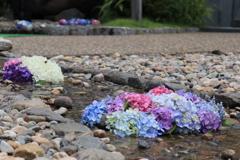 お花の小川