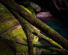 deep nature