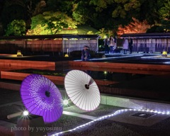 和傘と紅葉