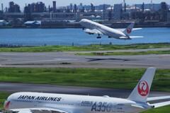 A350絡み