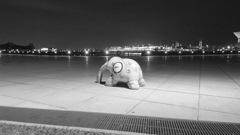 『夜は短かし、歩めよ仔象』