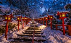 Silence Winter Beauty