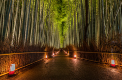 Arashiyama Hanatouro Festival