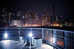歩道橋からの眺め
