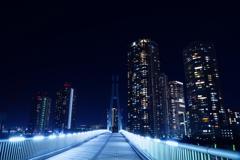 東雲水辺公園の夜景