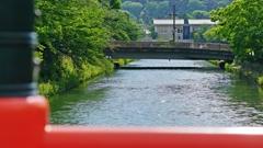 新緑の京都…じゃなくてもう夏です!