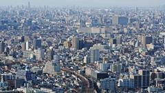 大都会東京の午後